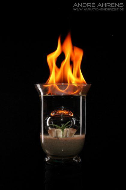 Feuer, Wasser, Luft und Erde